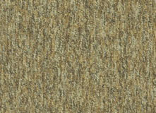 Ковровая плитка InterfaceFlor  New Horizons II 5581 5527 Bezhevyy Wheat